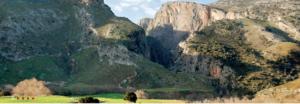 Kourtokaliotiko Gorge