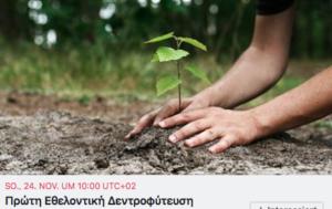 24 Nov Tree Planting